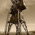 Cockatoo Dock Straddle Crane by Richard  Windeyer