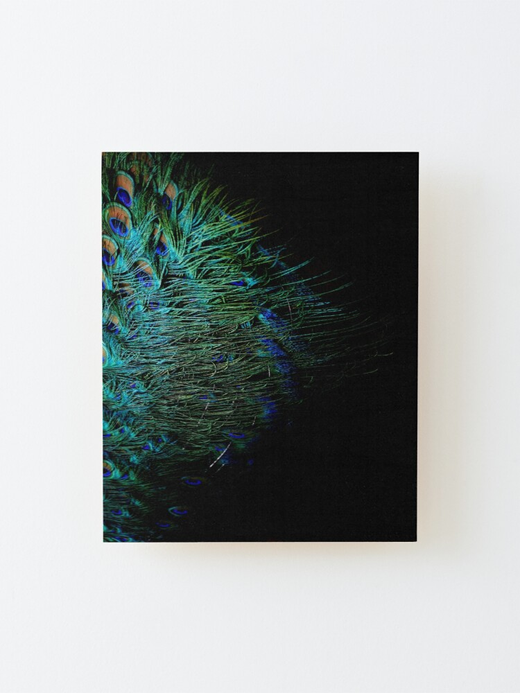 Alternate view of Peacock Feather Mounted Print