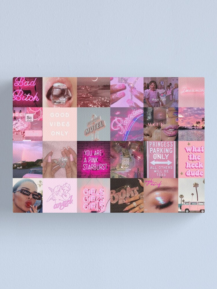 Pink Aesthetic Canvas Print By Caroline270 Redbubble