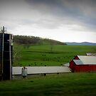 Blue Ridge Mountain Farm by Debbie Robbins