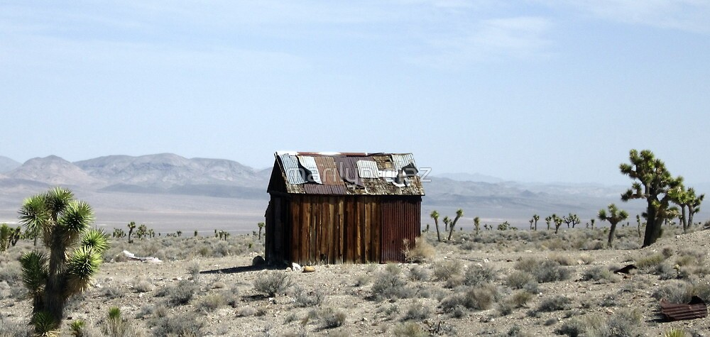 Once A Miners Home by marilyn diaz