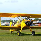 Beautiful Bi-Plane by Laurie Perry