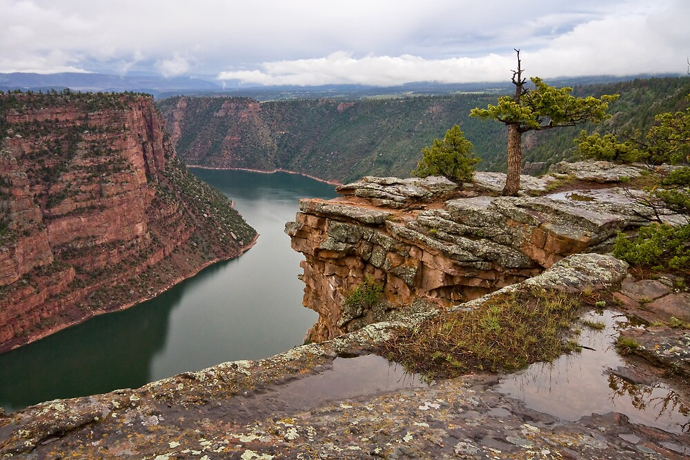 Red Canyon Rain by Kim Barton