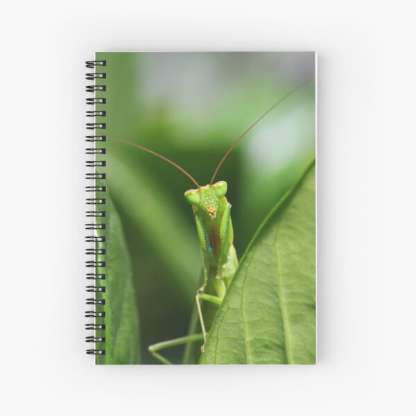 Watching Me Watching You - Praying Mantis Spiral Notebook