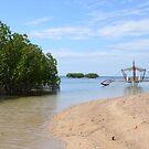 Starfish Island by Paul Gibbons