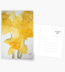Awash with Daffs Postcards