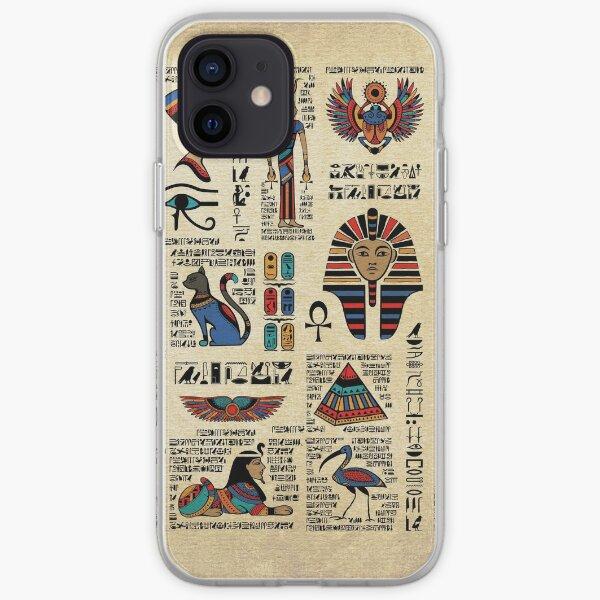 Egyptian hieroglyphs and deities on papyrus iPhone Soft Case