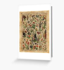 Colourful Wild Meadow Flowers Over Vintage Dictionary Book Page Greeting Card