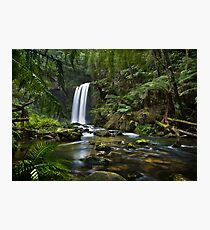 Spring Falls Photographic Print