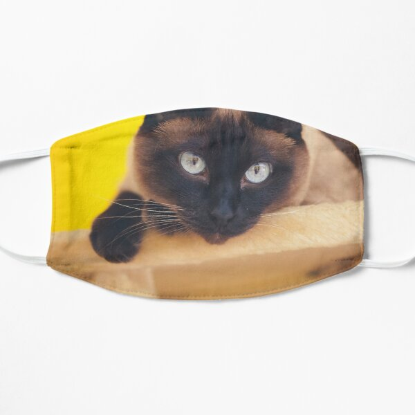 Siamese Cat Mask