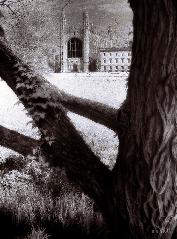 Cambridge I - Kings College Chapel by melmoth