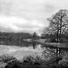 Drumintine Lake by stevieblack