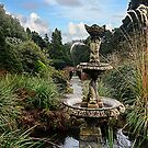 Castlewellan Forest Park Gardens by stevieblack