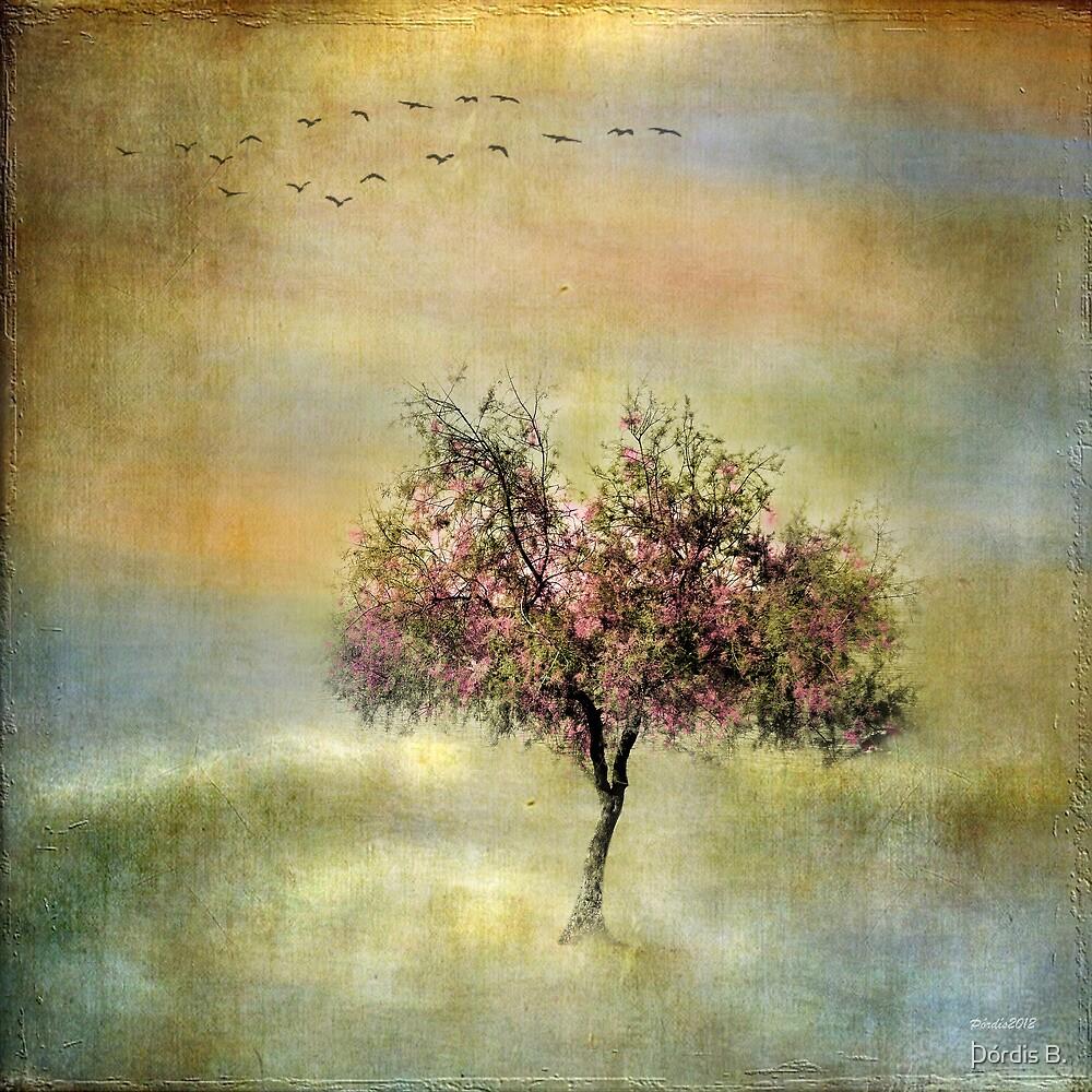 La Primavera by Þórdis B.