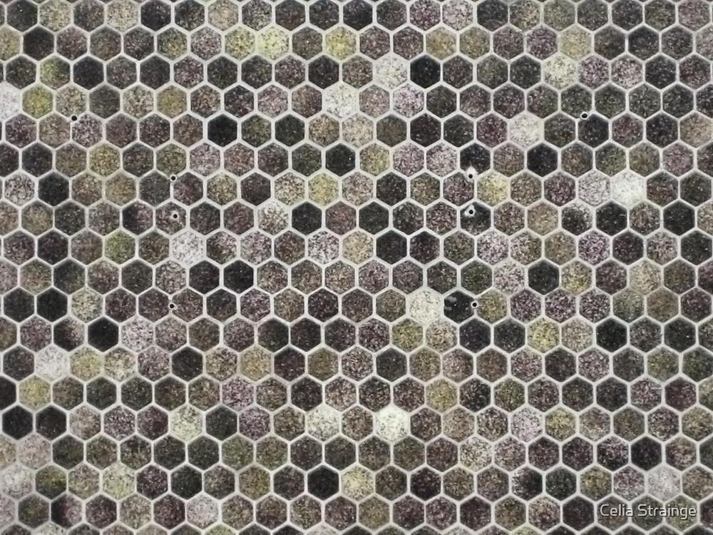 Mosaic in Monochrome by Celia Strainge