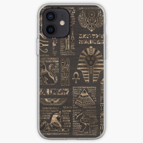 Egyptian hieroglyphs and deities - gold on wood iPhone Soft Case