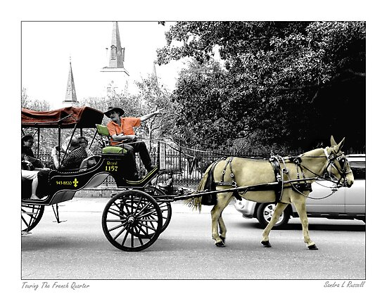 French Quarter Buggy Ride by Sandra Russell