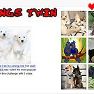BANNER TOP TEN ALL THINGS TWIN by Guendalyn