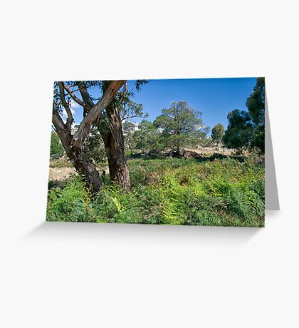 Pyalong, Victoria Greeting Card
