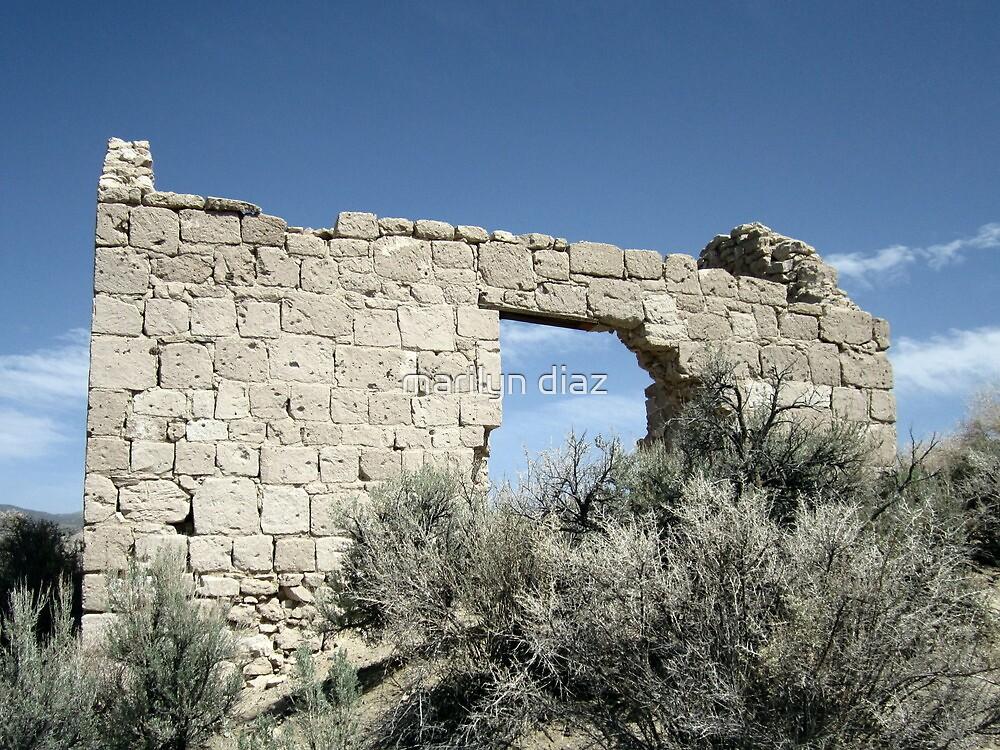 Desert Views by marilyn diaz