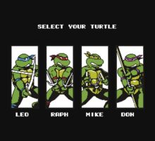 Please Select Your Turtle