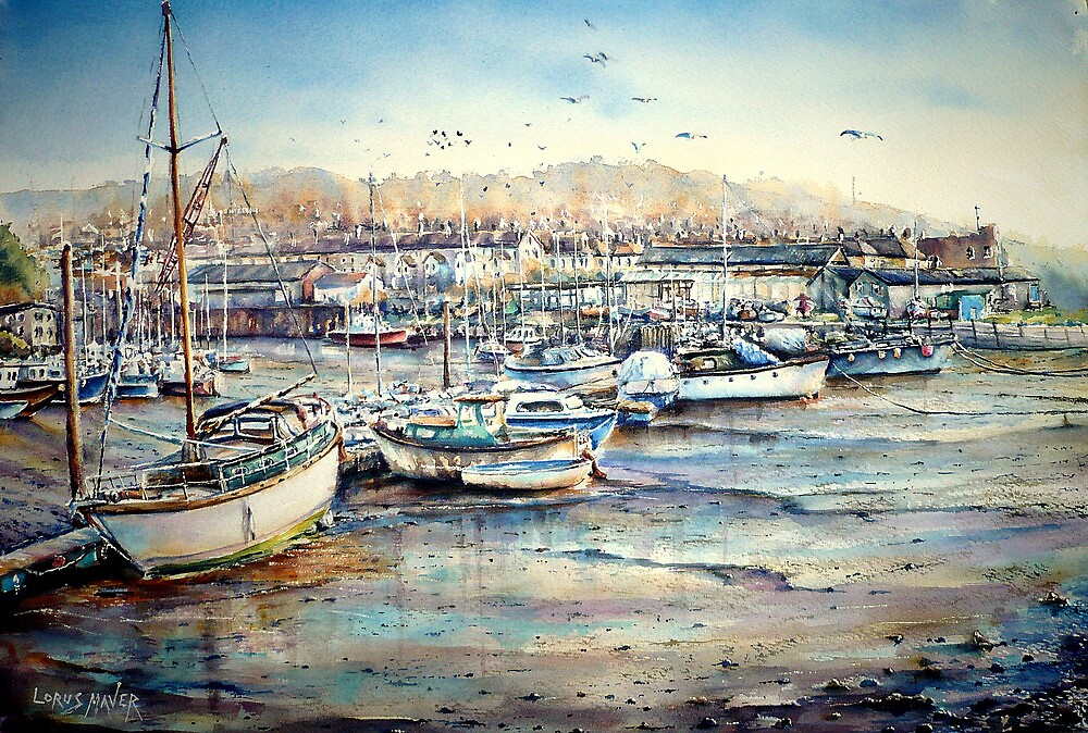 Harbour Life, Mobbing crows & raucous gulls by LorusMaver