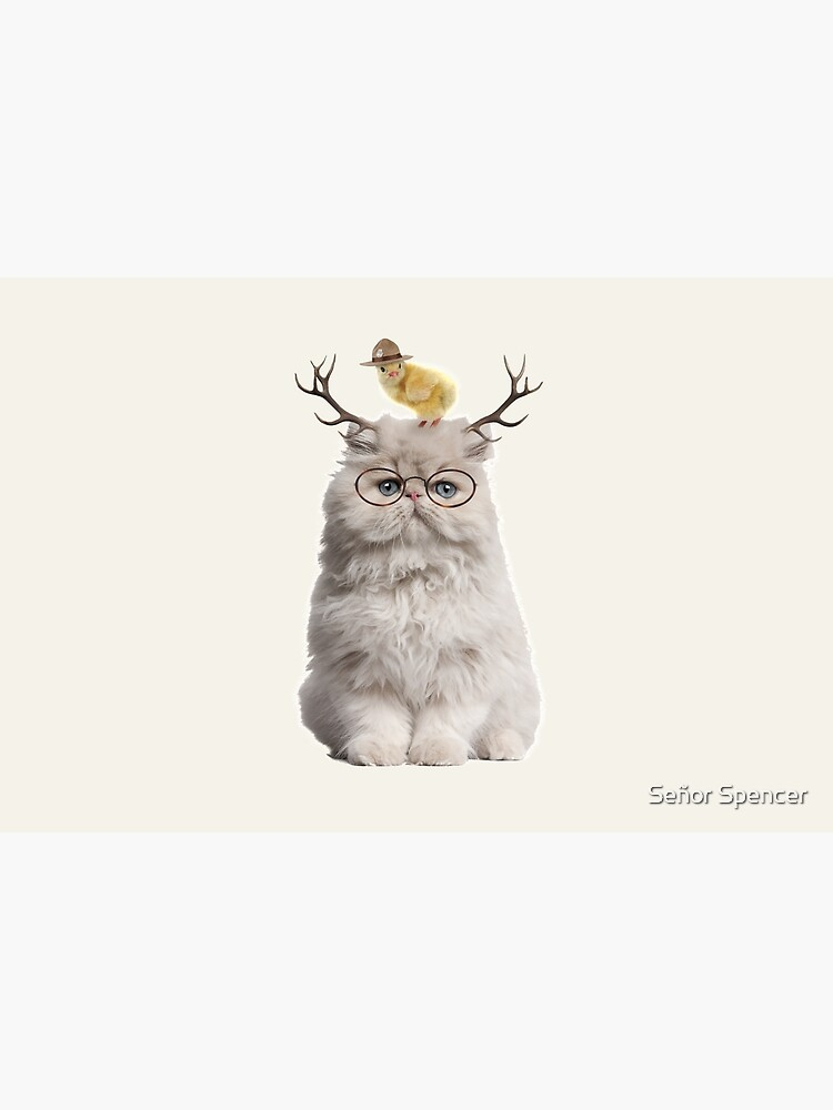 Cat that Chick by senor-spencer