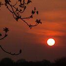 Sunset Study 2 by Chris1249