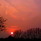 Sunset Study 1 by Chris1249