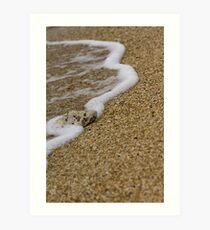 Beached Coral Art Print
