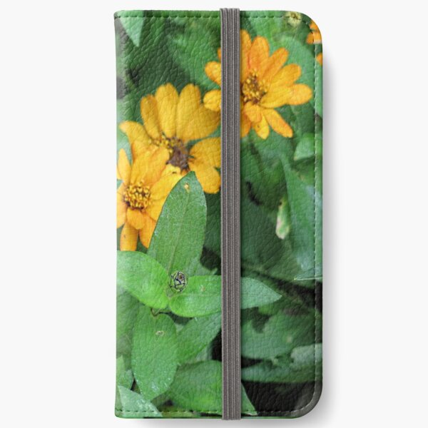 Orange and yellow daisies iPhone Wallet