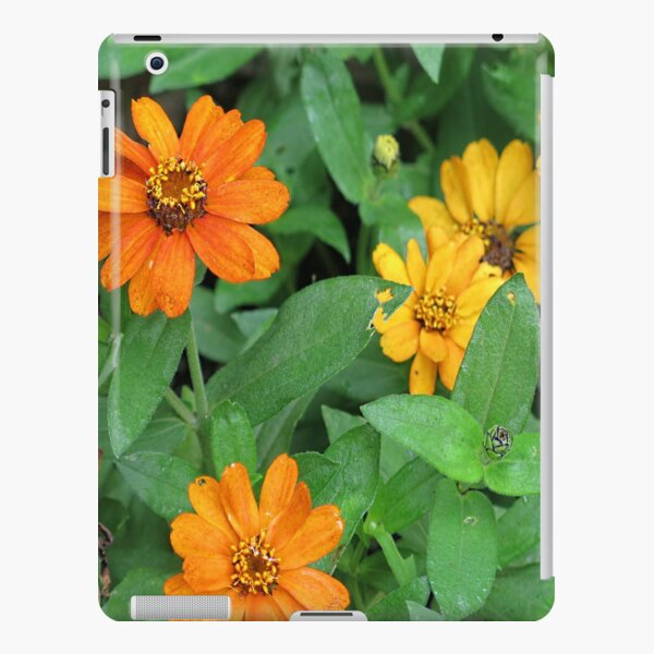Orange and yellow daisies iPad Snap Case
