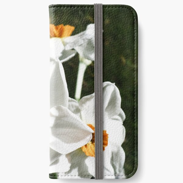 Narcissus poeticus HFPHOT27   iPhone Wallet