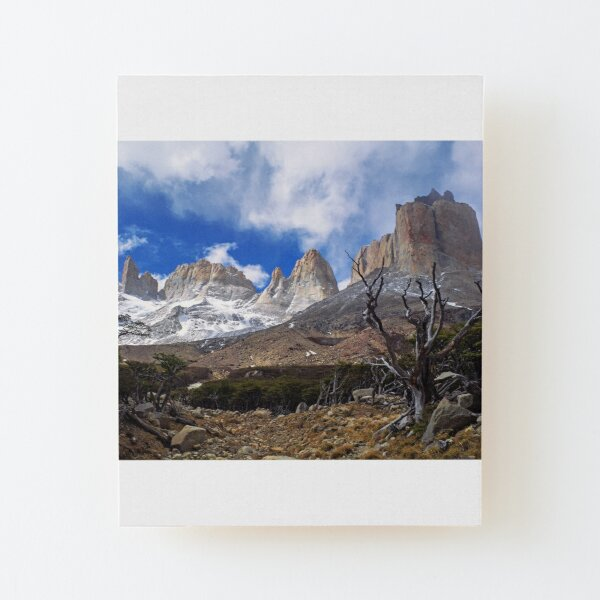 British Viewpoint, Torres del Paine, Patagonia (Chile) Wood Mounted Print