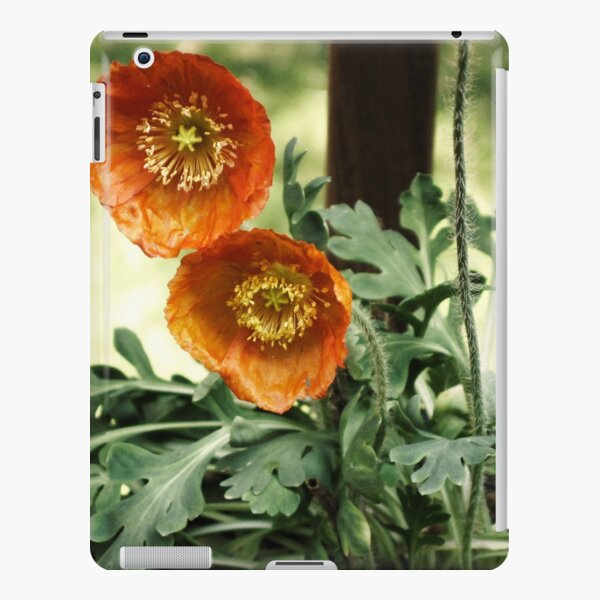 Orange Poppies iPad Snap Case