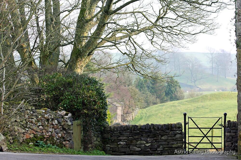 Garden Gate by ASTRID EWING