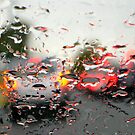 2/4 driving rain by Evelyn Bach