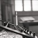 Light alone by CameraMoose
