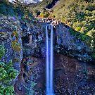 Mangawhero Falls by Ken Wright