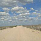 Road across Africa by Irene  van Vuuren
