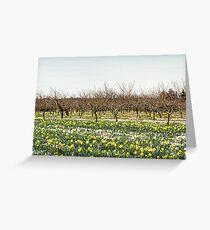 Spring Thaw Greeting Card