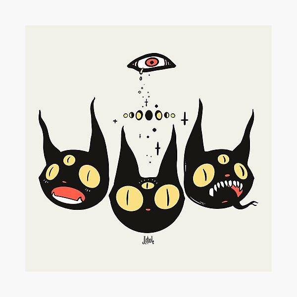 Three Strange Cat Heads. Gothic Dark Art Photographic Print