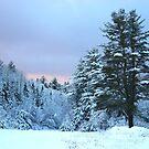 Winter Blues by Don Rankin
