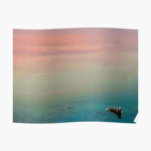 Hopper dans les nuages Poster