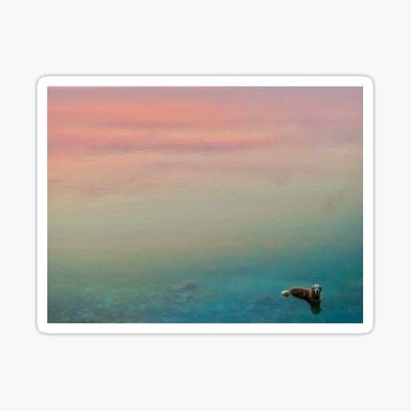 Hopper in the Clouds Sticker