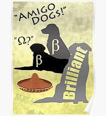 Amigo Dogs Poster