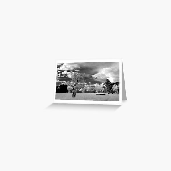 The Phoenix Park in Infra-Red Greeting Card