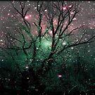 Forest Magic © by Dawn Becker
