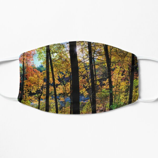 Walden Pond Autumn Forest  in Concord Massachusetts Mask