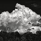 Thunder Cloud by Jeffrey  Sinnock